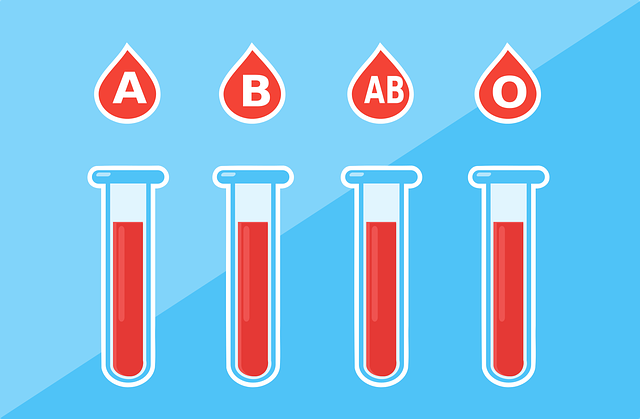 血液型と腸の関連性