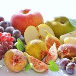 ビタミン、ホルモン、酵素